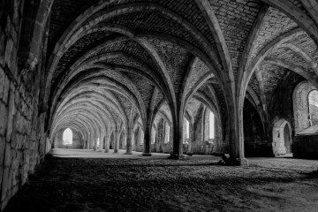 cellarium-at-fountains-abbey-1404138446xIF